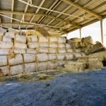 Storage of straw bales — Stock Photo