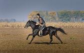 Hombre a caballo — Foto de Stock