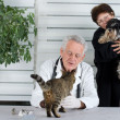 Stock Photo: In veterinary infirmary