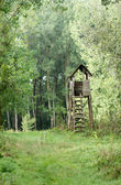 Watchtower in forest — Stock Photo
