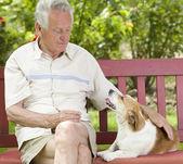 Senior man with his dog — Stock Photo