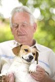 Cuddly dog — Stock Photo