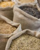 Tahıllar ile çanta — Stok fotoğraf