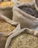 Bags with grains — Foto de Stock