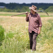 Old man in barley field — Stock Photo #47829637
