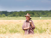 Worker in barley field — Stock Photo