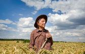 Worker in barley field — Stock Photo