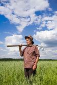 Old man in oat field — Stock Photo