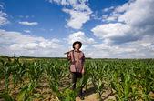 Old man in corn field — Stock Photo