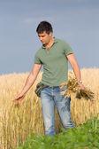Happy farmer in wheat field — Stock Photo