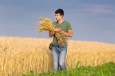 Man with bunch of wheat — Stock Photo