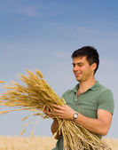 Man with bunch of wheat — 图库照片