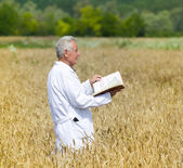 Agronomist in field — Stock Photo