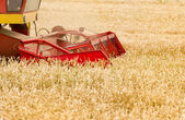 Combine in wheat field — Stockfoto