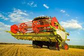 Harvesting wheat — Stock Photo