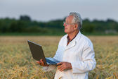 Agronomist with laptop — Stockfoto