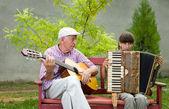 Guitar and accordion — Stock Photo