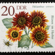 Germany postage stamp (DDR) 1982 — Stock Photo