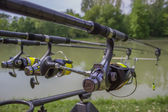Three Fishing Rods and Reels — Stock Photo