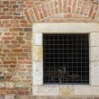 Old red brick wall  with bars window — Stock Photo