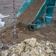 图库照片: Install top soil after plant tree