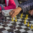 Pensioners play chess in a park — Stock Photo