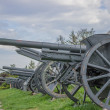 Vintage Cannons in a row — Stock Photo #36060869
