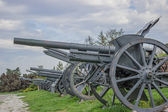 Vintage Cannons in a row — Stock Photo
