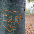 Stock Photo: Love message carved into tree