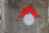Red and whit hike path symbol painted on tree bark 2 — Stock fotografie