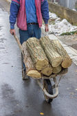 Man pushing wheelbarrow full of logs — 图库照片
