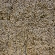 Stock Photo: Brown ground background texture