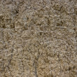 Brown ground background texture — Stock Photo