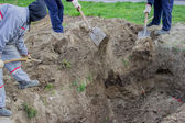 Backfill, last work done by hand 2 — Stock Photo