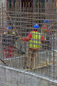 Workers constructing a rebar cage 2 — Stock Photo