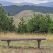 Wooden seating bench in nature — Stock Photo #50916281