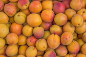 Farmers market organic apricots in a wooden crates, background — Stock Photo
