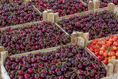 Farmers market organic cherrys in a wooden crates 2 — Stock Photo