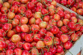 Farmers market organic cherrys in a wooden crate — Stockfoto