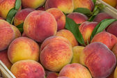 Farmers market peaches in a wooden crate background — Stock Photo