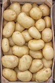 Farmers market potatoes in a wooden crate background — Stock Photo
