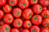 Farmers market tomato in a wooden crates,  background 3 — Stock Photo