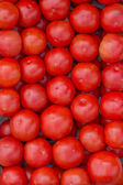 Farmers market tomato in a wooden crates,  background — Stock Photo