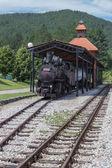 Vintage steam locomotive in station — Stock Photo