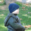 Little boy in the autumn park N 2. — Stock Photo