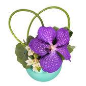Colourfull floral arrangement — Stock Photo