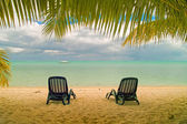 Deck chairs on a beach — Stock Photo