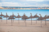 Straw umbrellas and empty beach — Stock Photo
