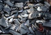 Carvão vegetal com pequeno brilho — Foto Stock