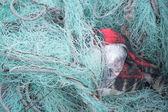 Mint green fishing nets. — Foto de Stock